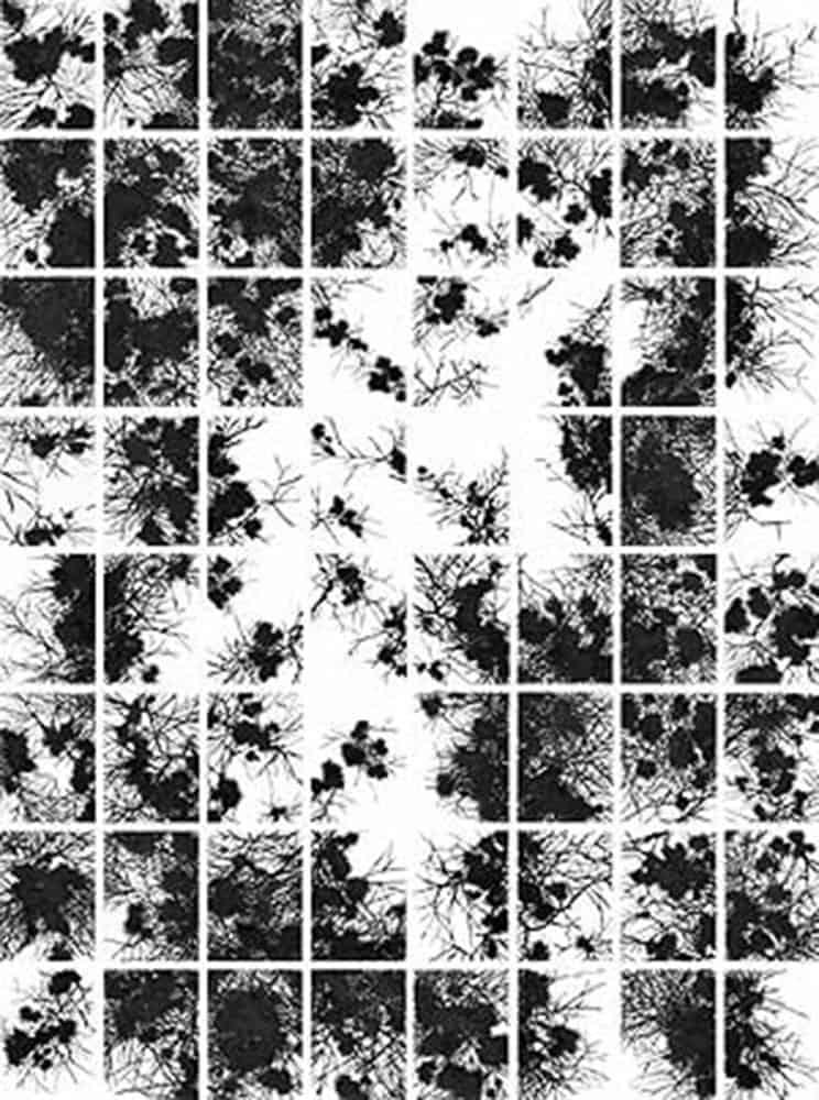 Michaela-Math_Ohne-Titel_Neudeli_Kunstraum